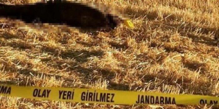Konya'da sır olay! Cansız bedeninin üzerinde çıktı