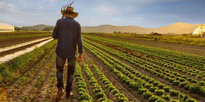 Kimi tarlasını satıyor, kimi intihar ediyor: Türk çiftçisi borç batağında!