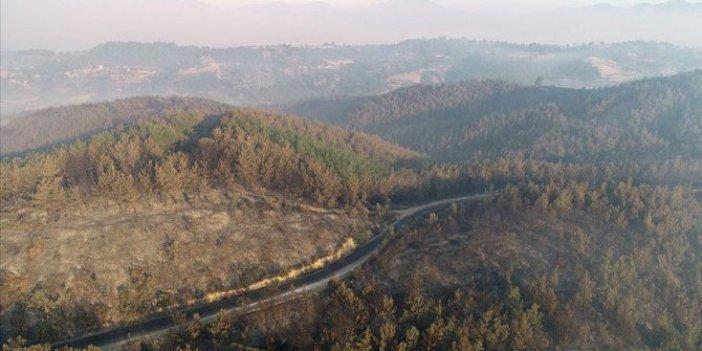 Bakan Bekir Pakdemirli duyurdu: Adana'daki yangın kontrol altında