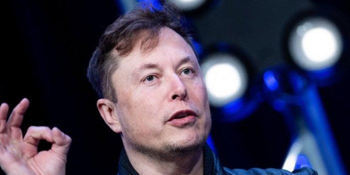İnsanlığın sonun getirecek gelişme: Elon Musk, domuzun beynine çip taktı