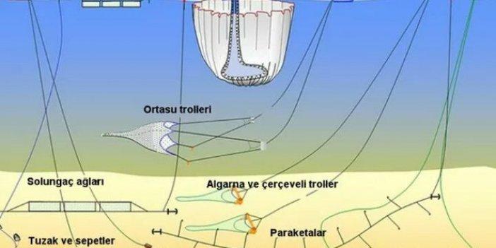 Hem koparıyor, hem dağıtıyor, alarm veriyor… Marmara Denizi ve çevresi büyük tehlikede: Acil ihtiyacımız var diyerek uyardı