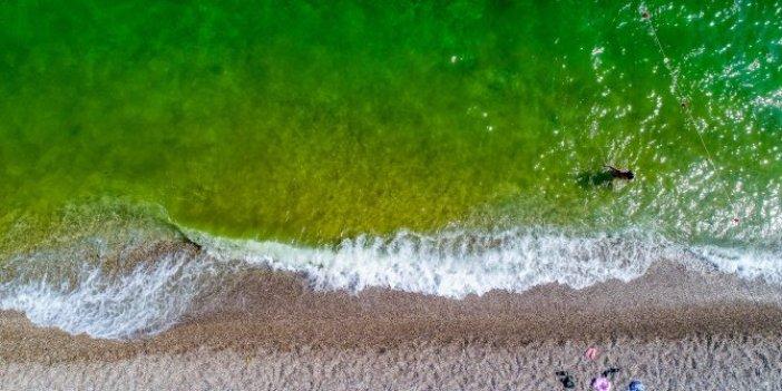 Masmavi deniz yeşyeşil oldu!Konyaaltı'nda korkutan görüntü