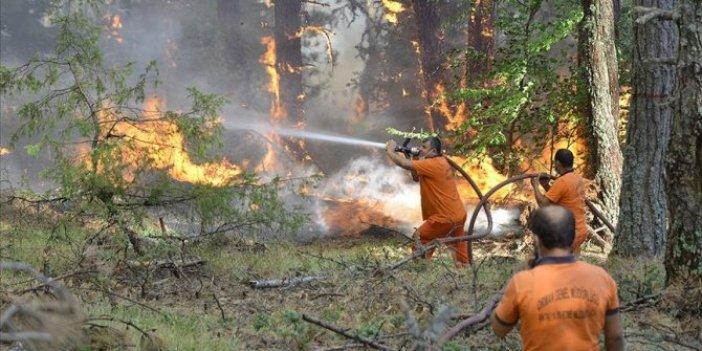 Çorum ile Sinop arasındaki orman yangını kontrol altına alındı