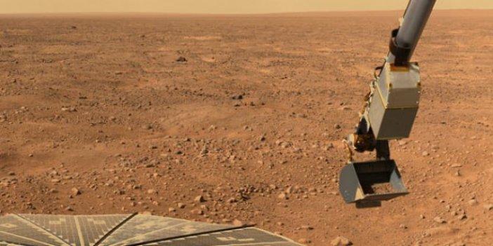 NASA duyurdu! Mars'a marul ve salatalık ekecekler! Hazırlıklar resmen başladı