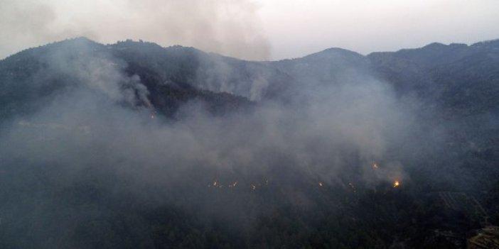 Hatay'da orman yangını devam ediyor