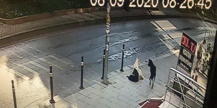 Genç kadın sokak ortasında dehşeti yaşadı: Bir saniye sonra başına gelecekleri bilmiyordu