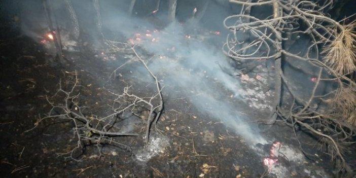 Karabük'te orman yangını söndürüldü