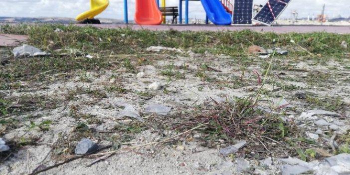 Çocuk parklarında büyük tehlike: İnsan duymak bile istemez