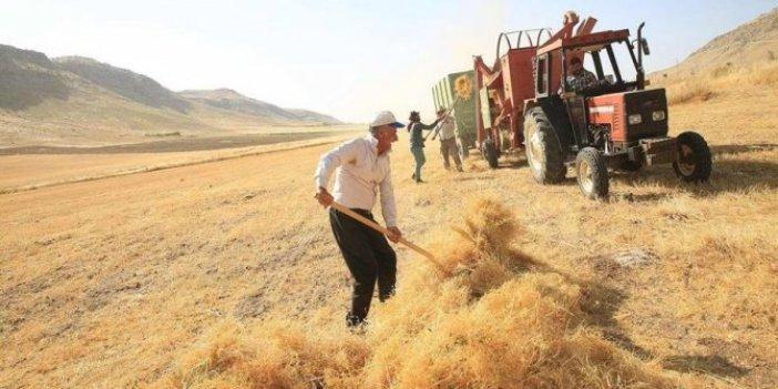 Tarımda ithalat patladı köylü çöktü! 7 ayda 6 ürüne 3,5 milyar dolar ödedik!
