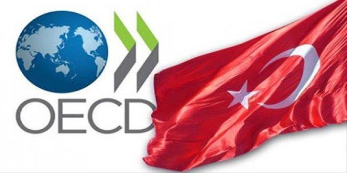 OECD Türkiye ekonomisi tahminini revize etti