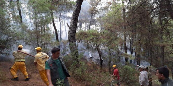 Bozdoğan'da korkutan yangın
