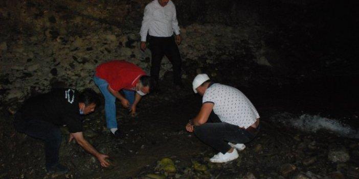 İyi insanların balıkları yaşatmak için çırpınışı! Türkiye'de güzel şeyler de oluyor