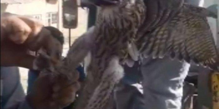 Ayaklarına ölü kuş kafasına maske bağladılar, bunu yapan insan olamaz
