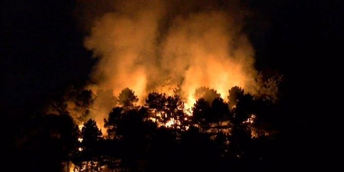 Aydos Ormanları'nda yangın!