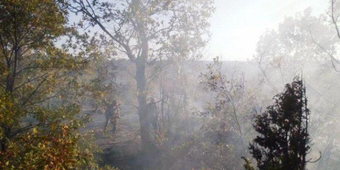 Domaniç'teki orman yangını söndürüldü