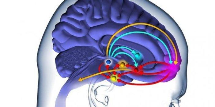 Beyin pillerinin ömrü uzadı