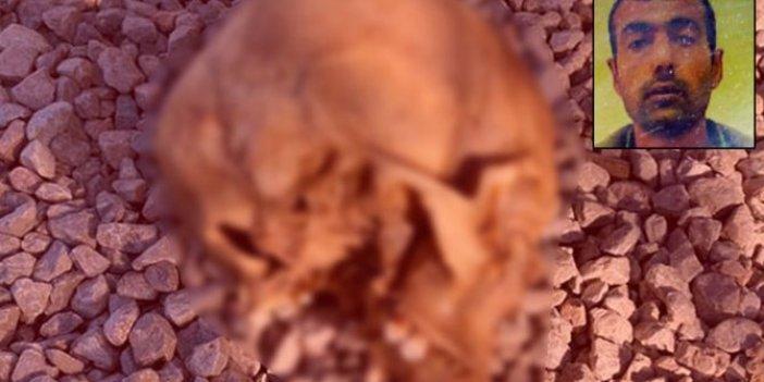 Bodrum'da köpek Çiko'nun bulduğu kafatasının kime ait olduğu belli oldu