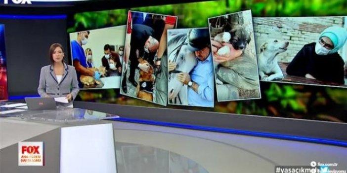 Reytinglerin yeni efendisi FOX TV haber sunucusu Gülbin Tosun ezber bozdu, Canlı yayında siyasilere sert çıktı