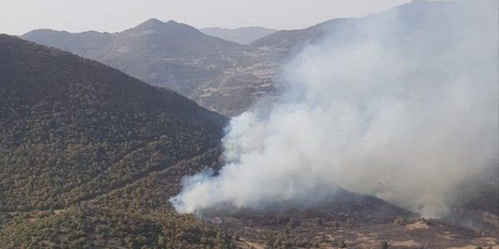 Akhisar'daki orman yangını havadan söndürüldü