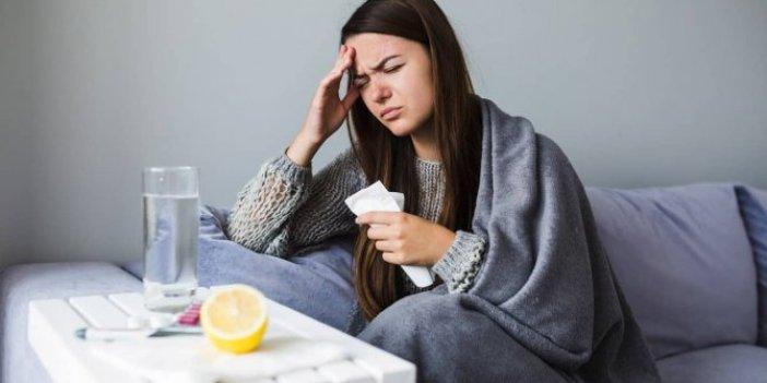 Araştırmacılar 'dikkatli olun' diyerek uyardı. Kediden insana bulaşıyor. Belirtileri grip ile aynı