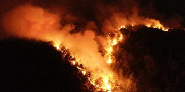 Adana'da orman yangını! 100 işçiyle kontrol altına alınabildi