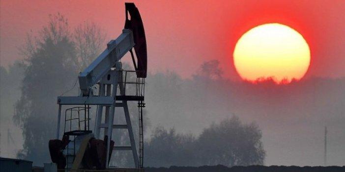 Rusya'nın petrol gelirleri yüzde 40 azaldı