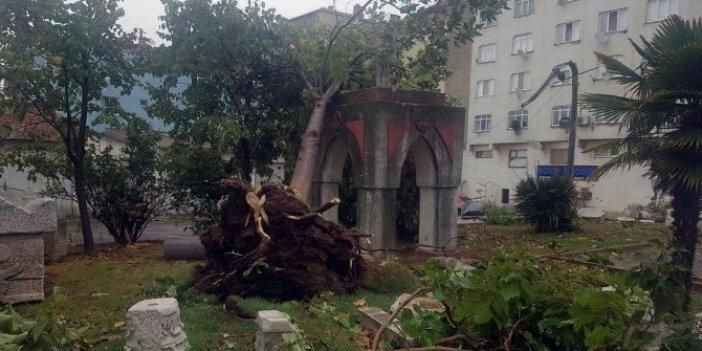 Beklenen hortum ağaçları kökünden söküp, çatıları uçurdu, vatandaşlar büyük panik yaşadı