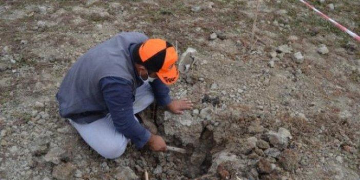 150 yıldan sonra Türkiye'de bulundu! Bunca yıl 'kayıp' olarak görünüyordu