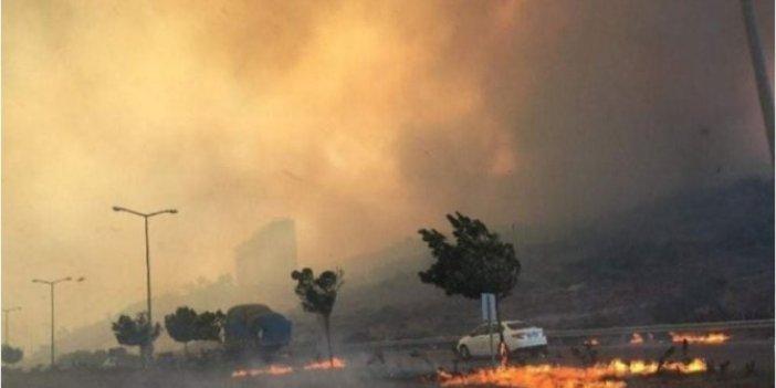 Hatay'da halk düşmanlarının yaktığı yerlerdeki son durum açıklandı