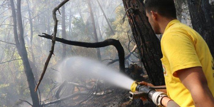 Adana'da orman yangını söndürüldü