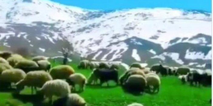 Burası İsviçre olsa beğenenler utansın. Bilin bakalım burası Türkiye'nin neresi