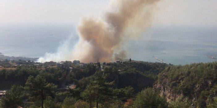 İskenderun'da farklı bir mahallede orman yangını çıktı