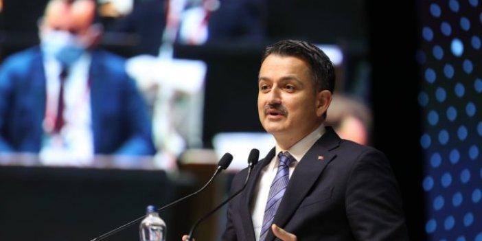 Bakan Pakdemirli, Mersin, Adana ve Hatay'daki yangınlarda son durumu açıkladı