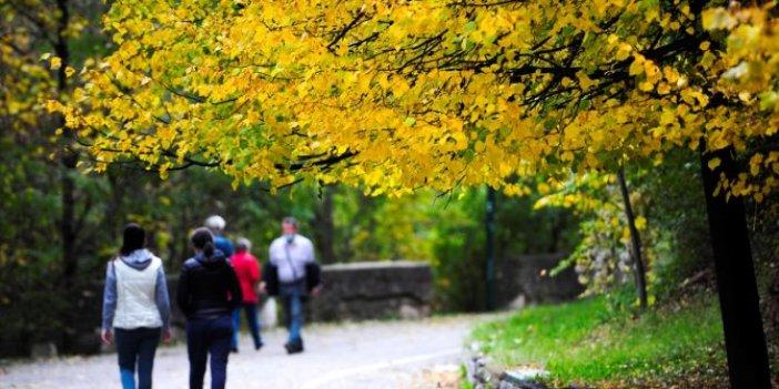 Saraybosna'da sonbahar şöleni