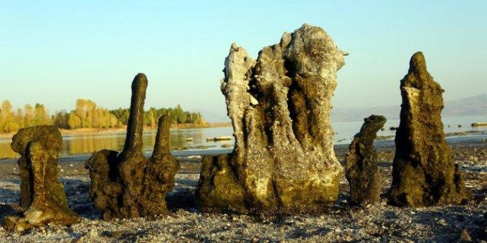 Van Gölü'nde sular çekilince mikrobiyalitler ortaya çıktı. Dünyanın en büyüğü. Görenler kendinden geçti