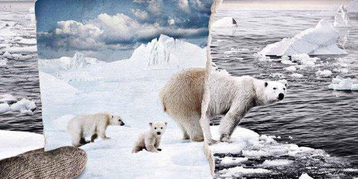 Kutup buzulları eriyince ortaya çıktı. Bilim insanları aynı anda dehşete düştü