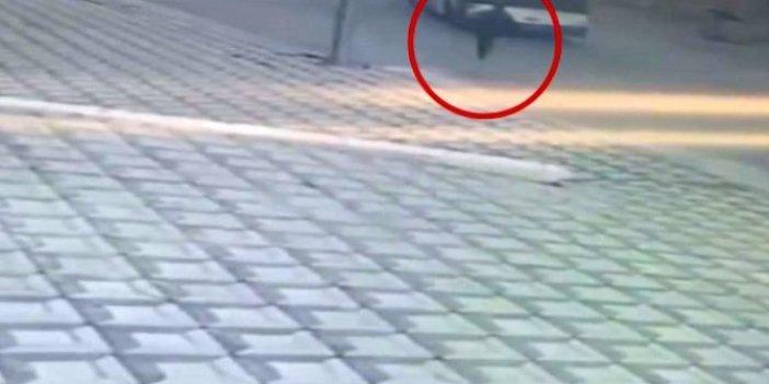 Otobüs bir anda geri geri gitmeye başladı, şoför sadece peşinden koşabildi. Olası faciadan böyle kurtuldular