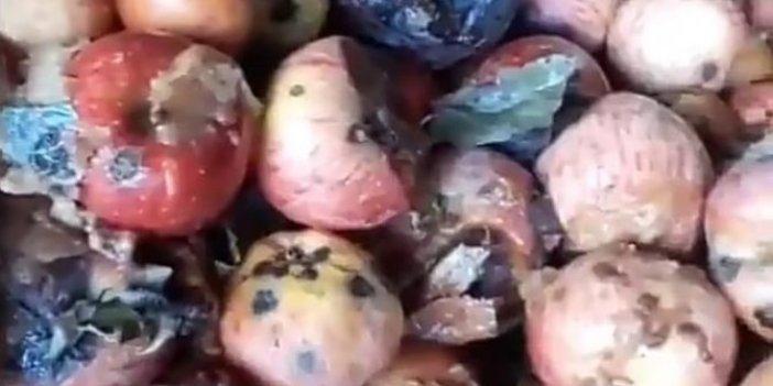 Çürük elmalı meyve sularına bakanlık incelemesi