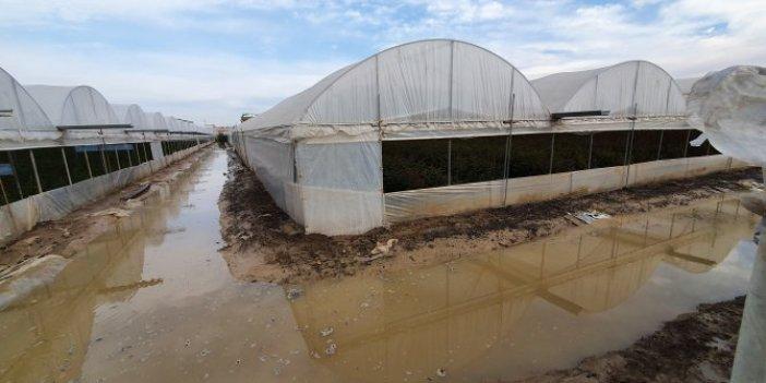 Su borusu patladı 5 senelik emeği sel oldu aktı