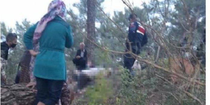 Muğla'da ağaç kesmek için gittiği ormanda tomrukların altında kalan vatandaş can verdi
