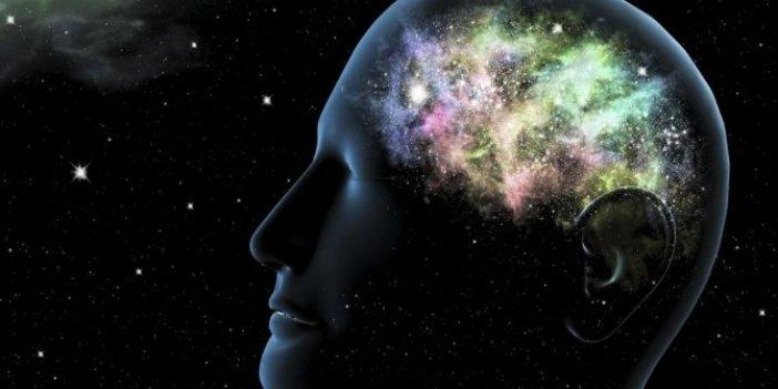 Yapısı insan beyni gibi. Akıllara durgunluk veriyor
