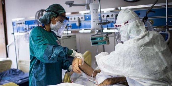 Dünyada tedavisi devam edeen korona hasta sayısı 16 milyonu geçti