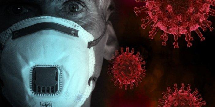 Araştırmacılar tüm dünyaya duyurdu. Korona virüsün kardeşi ortaya çıktı: Tıpa tıp benziyor