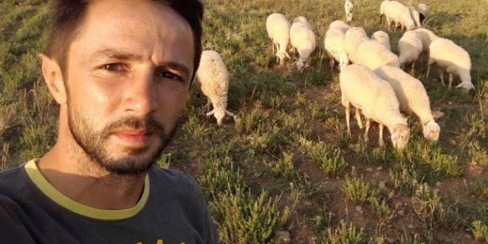 Kangal köpeğini hedef tahtasına çevirdiler. Koyunları kurtarmak için kurşunların hedefi oldu