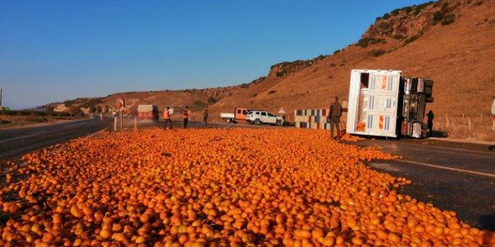Hatay'da TIR devrildi. 15 ton mandalina yola saçıldı