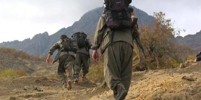 PKK'lı kadın terörist teslim oldu