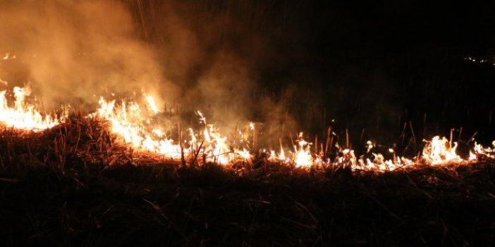 Eber Gölü'nün çevresi cayır cayır yanıyor. Gölleri de kuruyan vatandaşlar isyan etti