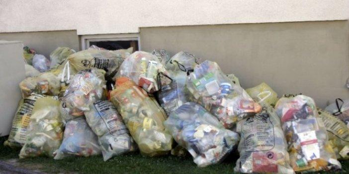 Çöpte bulundu yok olmaktan son anda kurtarıldı. 2 milyon 700 bin TL değerindeydi
