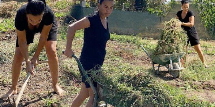 Ünlü oyuncu Filiz Taçbaş'a hırsızlık şoku. Meslektaşı Burak hakkı ile aynı yolu seçerek İzmir'de tarımcılığa başlamıştı