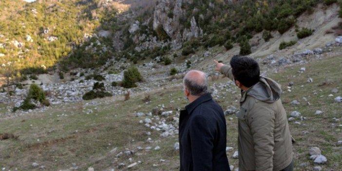Dağdan topluyorlar günlük kazançları 500 TL. Andırın köylülerini tabiat ana sevindiriyor